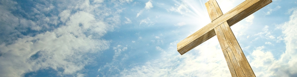 sky_cross_wide-960x250