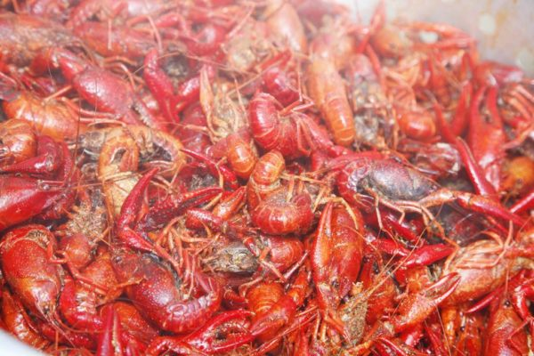 crawfish_boil_2017